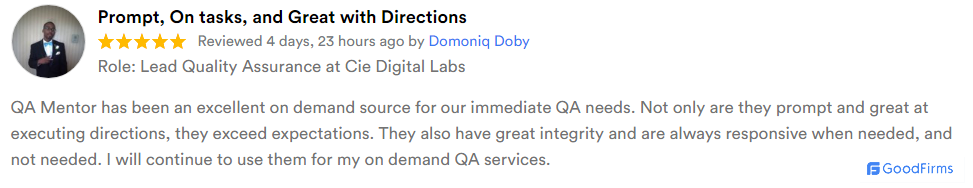 qa mentor review